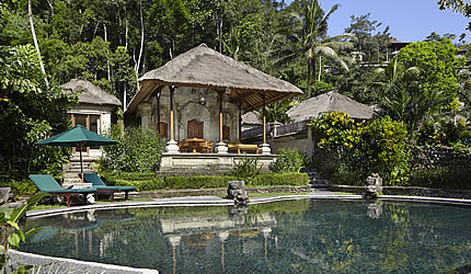 Ayung Healing Villa with private pool